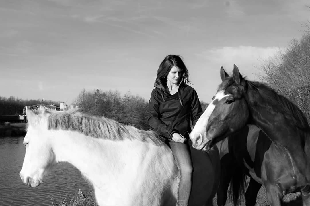 Pour des chevaux biens dans leurs têtes
